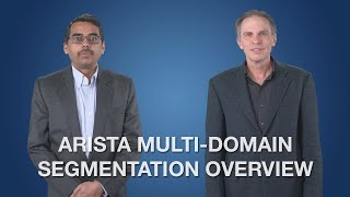 Arista Multi-Domain Segmentation Overview