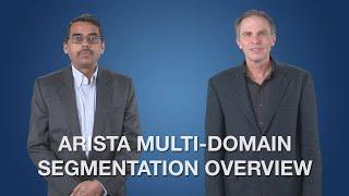 Arista Multi-Domain Segmentation Overview