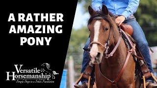 🔴 A RATHER AMAZING PONY (live-stream) // Versatile Horsemanship