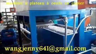 boîte à oeufs formant des machines-whatsapp:0086-15153504975