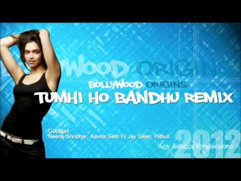 Tumhi Ho Bandhu Remix Feat  Jay Sean, Pitbull   YouTube 3