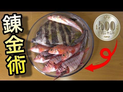 【珍魚】500円しか持たないで市場で買ったおさかなで作った刺盛りが予想以上 Fish bought for $ 5