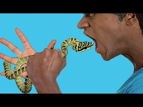 snake in mouth | original snake game street  performance by cobra snake charmer