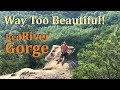 The Best Secret Of Kentucky? | Exploring The Red River Gorge | we're Back!
