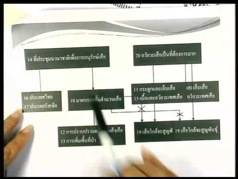 ปี 2556 วิชา ภาษาไทย ตอน GAT (เชื่อมโยง) วิเคราะห์ข้อสอบ ตอนที่ 3