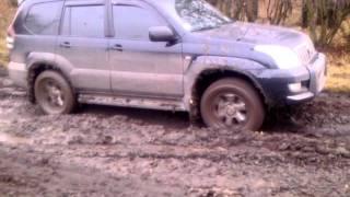 Прадо грязи не боится,  Часть 2