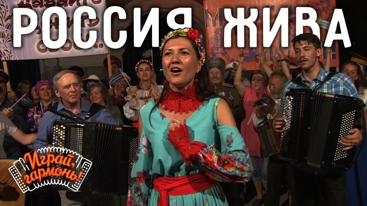 Играй, гармонь! | Марина Смелкова (г. Омск) | Россия жива