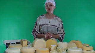 Уход за сырами при вызревании. Уроки сыроделия Ольги Елисеевой.