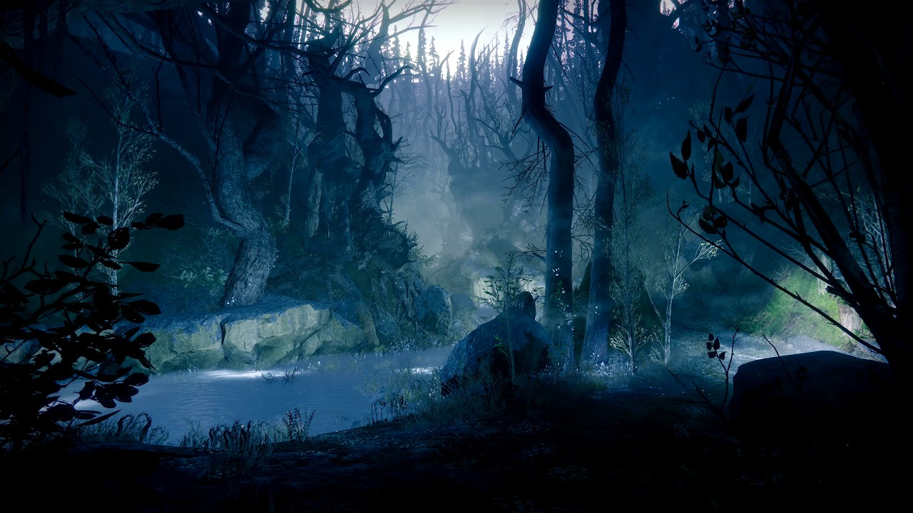The Dark Forest - (Destiny 2) - [Live Wallpaper] 4K - YouTube