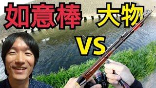 如意棒VS大物 thumbnail