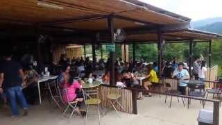 ไร่ชาฉุยฟง แม่จัน เชียงราย รีวิว Thai Choui Fong Tea Chiang Rai Video Review.1