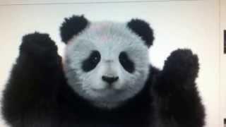 annonce Telus panda
