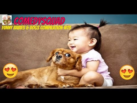 Funny Baby Laughing Hysterically at Dog Video-Funny Babies & Dogs Compilation #73