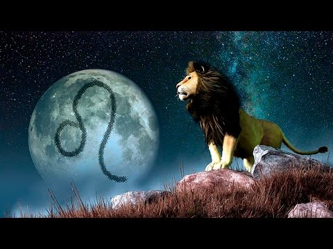 Лев: гороскоп на сегодня для Льва женщины