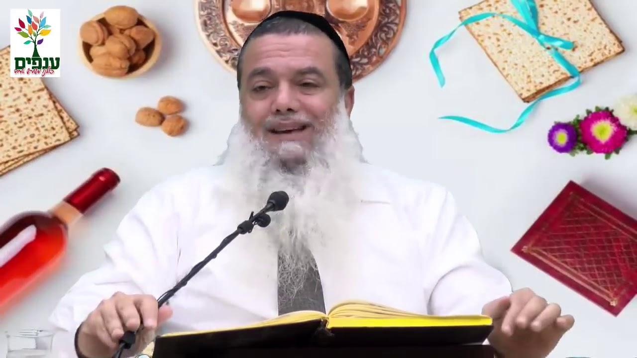 """פסח - חג של גאולה  - הרב יגאל כהן שליט""""א"""