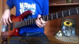 Download RHCP - On Mercury (Bass Cover with TABS!) MP3 song and Music Video