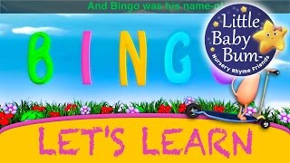 BINGO The Dog | Learn with Little Baby Bum | Nursery Rhymes for Babies | Songs for Kids