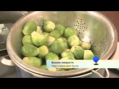 Брюссельская капуста Уход, выращивание, размножение
