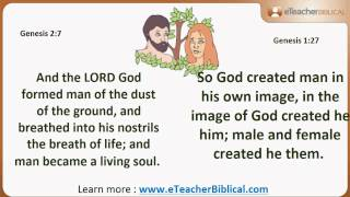 Why are there 2 creation stories? | Biblical Hebrew Q&A with eTeacherBiblical.com