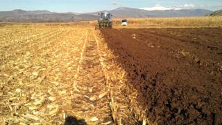 New holland T7030 ploughing corns in greece