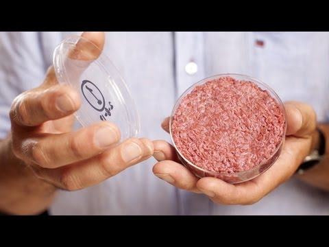 How world's first test-tube burger was grown