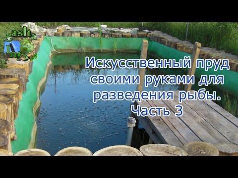 Искусственный пруд своими руками для разведения рыбы. Часть 3