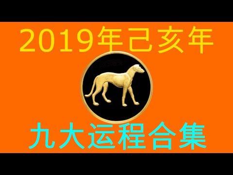 2019年己亥年九大运程大合集:肖狗者
