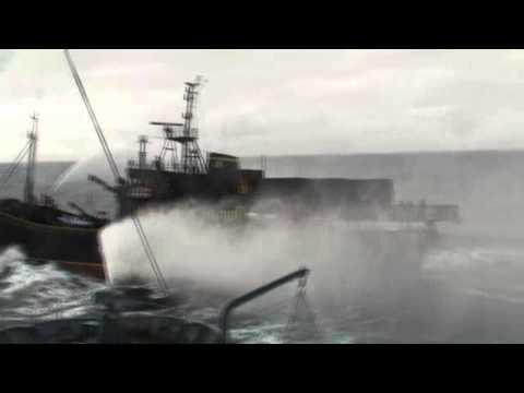Steve Irwin activists throw butyric acid containing bottles toward the Shonan Maru No  2