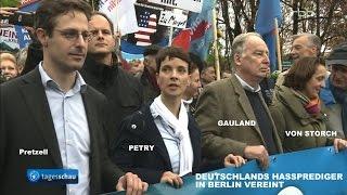 AfD-Demo am 7.11.2015: Ein brauner Samstag in Berlin