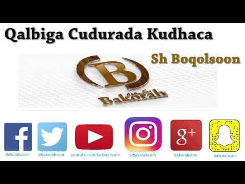 Qalbiga Cudurada Kudhaca - Sh Boqolsoon