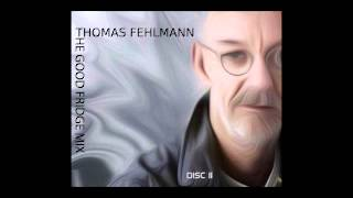 Thomas Fehlmann - the good fridge mix part II