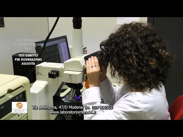 LABORATORIO MENDEL GENETICA MEDICA SRL