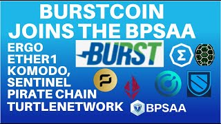 BurstCoin Joins with Komodo, Pirate Chain, Ergo, Sentinel, Turtle Network and Ether 1 in the BPSAA!
