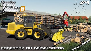 Transporting 5m logs & selling woodchip | Forestry on Geiselsberg | Farming Simulator 19 | Episode 4