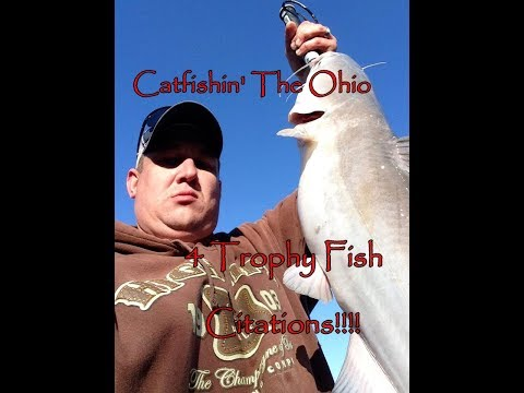Monsters on the Ohio 2014 catfish tournament from YouTube · High Definition · Duration:  10 minutes 23 seconds  · 18,000+ views · uploaded on 10/15/2014 · uploaded by INDIANA HUNTER Fishing & Hunting Videos