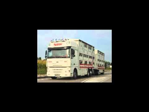 TRANSPORT BARDY BRESSE  (2) = Patron Voyou =  Zone de la Milleurs 71580 FRONTENAUD (Video 2/3)