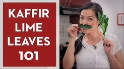 Ultimate Guide to Kaffir Lime Leaves - Hot Thai Kitchen
