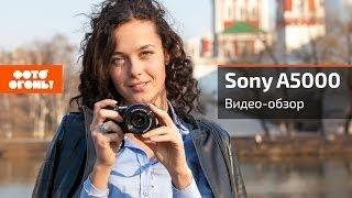 Обзор Sony Alpha 5000 -- беззеркалка с большими возможностям