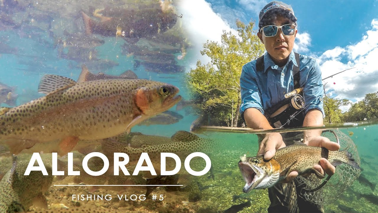 ee6f3716e3 Trout Fly Fishing at Bennett Springs - Lebanon