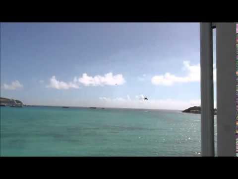 2015 01 St Maarten pelikanen 1