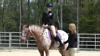 Tara Jones Pieceful Solutions Riding and Training Tip:  Stabilization of lower leg