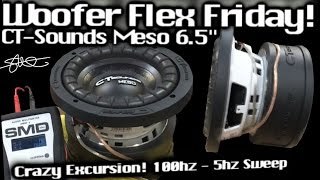 Woofer Flex Friday! Big Excursion, Little Subwoofer! 100hz - 5hz Sweep - CT Sounds Meso 6.5