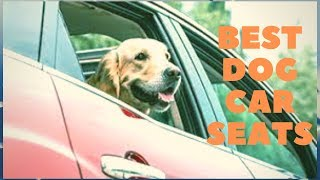 Best Dog Car Seats - Keep Your Dog Safe While Driving