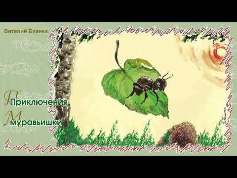Приключения муравьишки виталий бианки мультфильм