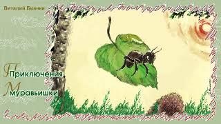 Приключения муравьишки - Сказка Виталия Бианки