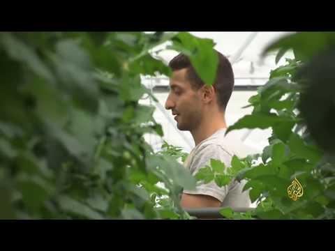 هذا الصباح- قفزة بقطاع الزراعة الحضرية حقلها بروكسل  - نشر قبل 2 ساعة