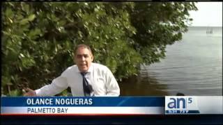 Balseros llegan a muelle de una casa en Palmetto Bay - América TeVé
