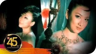 Gambar cover 风采姐妹 Summer Grace - 落花泪