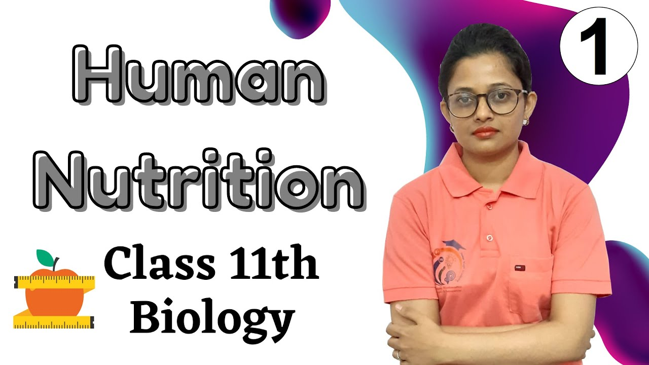 Download Human Nutrition Class 11th Biology Part 1