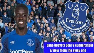 Idrissa Gana Gueye Goal v Huddersfield away 2018 - a view from the away end